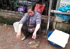 Chị hàng cá 'dắt' cá đi bán: Tôi chỉ mong dẹp vỉa hè