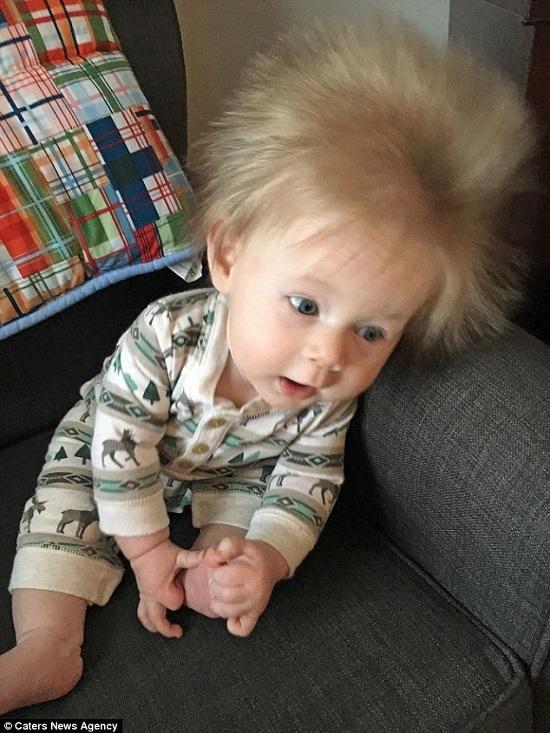 Mỹ, Oliver, mái tóc kỳ lạ, nuôi con