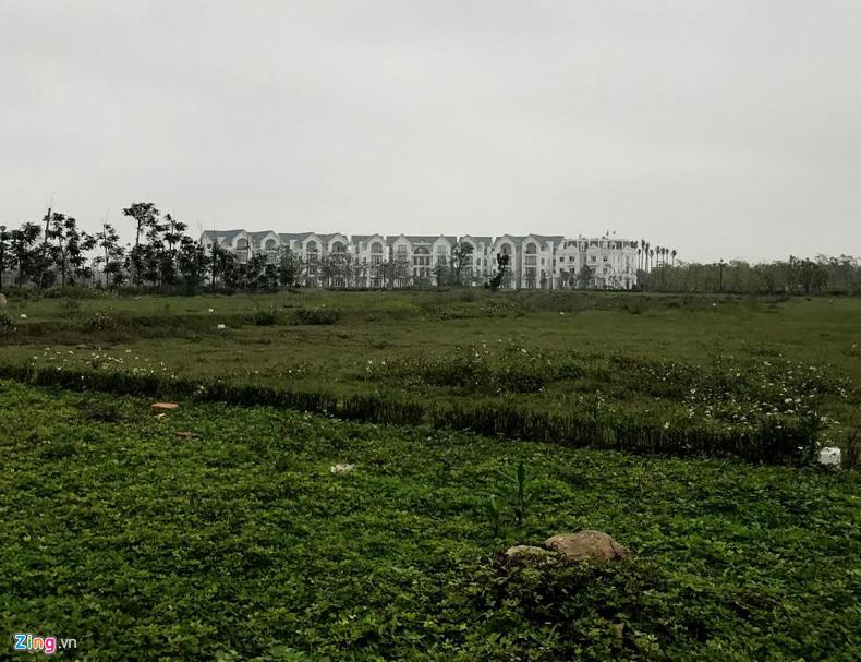 Tuần Châu Ecopark, chúa đảo Tuần Châu, Đào Hồng Tuyển