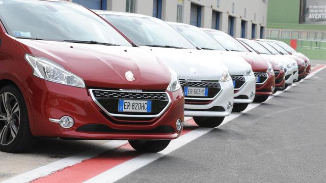 ô tô nhập, xe sang, ô tô Pháp, xe ô tô, ô tô, xe nhập, nhậu khẩu