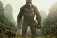 """13 chi tiết vô lý đến nực cười trong bom tấn """"Kong: Skull Island"""""""