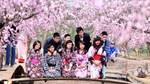 Nhân tài sẽ có cơ hội lấy vĩnh trú ở Nhật chỉ sau một năm
