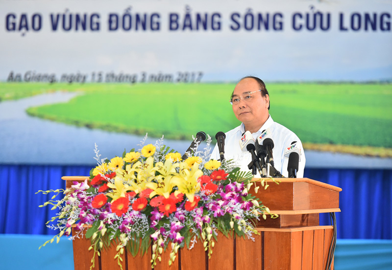 xâm thực gạo, Thủ tướng Nguyễn Xuân Phúc, Thủ tướng, Nguyễn Xuân Phúc, lúa gạo, đồng bằng sông Cửu Long
