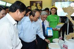 Thủ tướng: Nguy cơ 'xâm thực' gạo từ nước ngoài mới đáng sợ