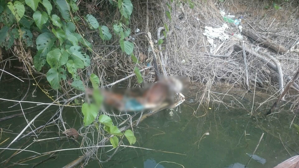 Phát hiện bộ xương người treo lơ lửng trên mặt nước