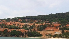 Đà Nẵng kiểm tra việc cày xới bán đảo Sơn Trà làm du lịch