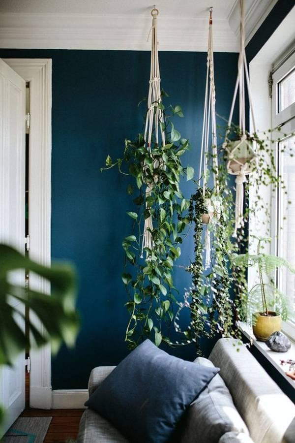 Cách trang trí cây xanh cho ngôi nhà thêm độc đáo