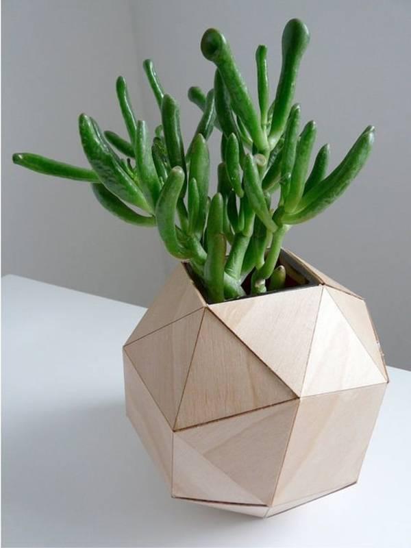 trang trí nhà, trồng cây xanh trong nhà, nhà đẹp