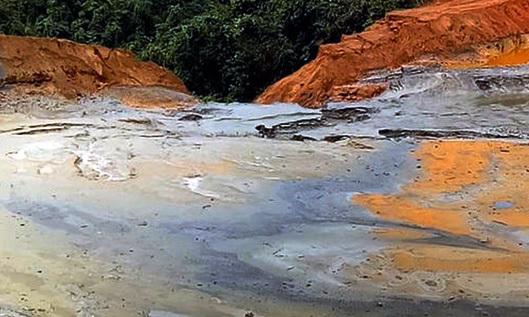 Phó Thủ tướng Trịnh Đình Dũng, vỡ đập chứa quặng, cá chết, chất thải kim loại, Nghệ An