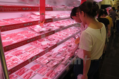 """Chấn động vụ """"thịt thối"""" của Brazil: Việt Nam nhập bao nhiêu?"""