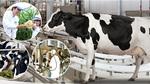Triển lãm quốc tế ngành Sữa và sản phẩm Sữa