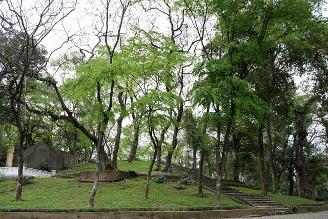 Kết quả hình ảnh cho công viên bách thảo ba đình hà nội