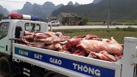 Hơn 4 tấn thịt thối suýt biến thành 'lợn hun khói'