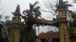 Chặt hạ cây sưa bán đấu giá 24,5 tỷ ở Bắc Ninh