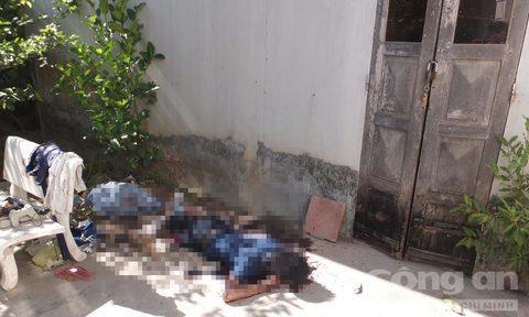 hai mẹ con bị giết, nạn nhân, hung thủ