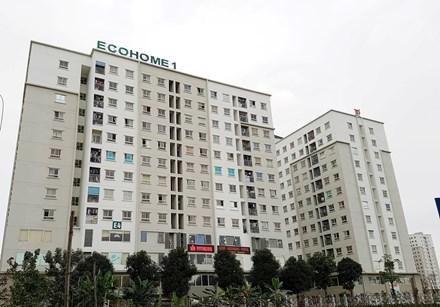 nhà ở xã hội, dự án Ecohome 1, đại gia ở nhà thu nhập thấp