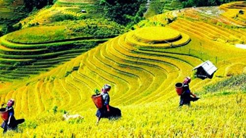 Tây Bắc đẹp mê đắm trên phố Tràng Tiền, Hà Nội