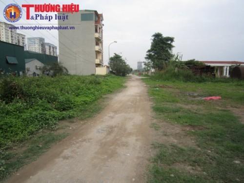 dự án khu đô thị Thịnh Liệt, dự án treo 10 năm, Licogi