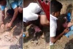 Giải cứu bé gái sơ sinh bị chôn sống trong hố cát
