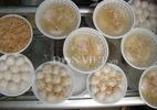 Cách làm bánh trôi, bánh chay đơn giản nhất cho Tết Hàn thực