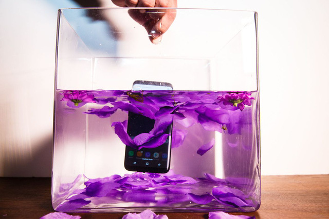 Galaxy s8, Galaxy s8 plus, Samsung, smartphone