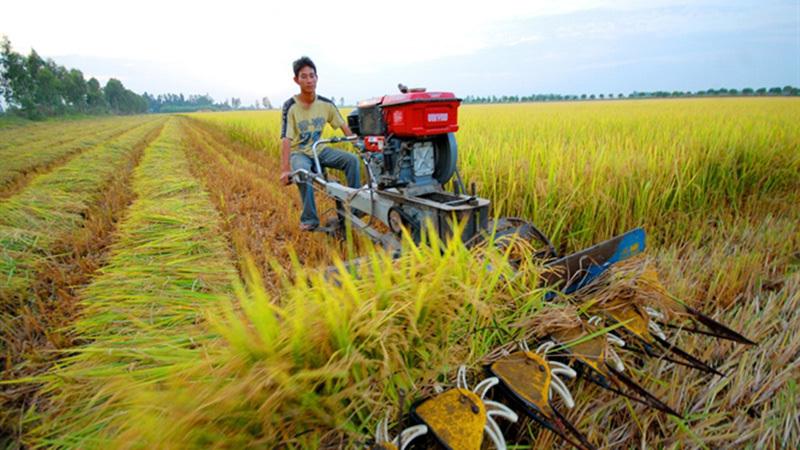tích tụ đất đai, mở rộng hạn điền, quyền tài sản đất nông nghiệp, giá đất nông nghiệp, thể chế tước đoạt, TS Nguyễn Đức Thành