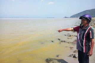 Đã có kết luận dải nước màu vàng ở vùng biển Chân Mây
