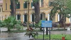 Một nữ sinh gãy cả tay và chân vì cây lớn đổ trong sân trường