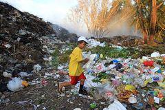 Nhặt nhạnh từng miếng cơm trên 'đảo rác' ở Phú Quốc