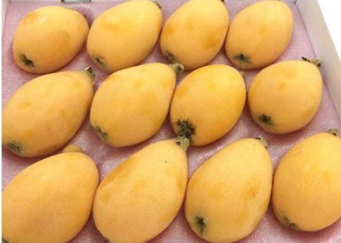 Quả Biwa 4 triệu/kg: Món lạ chị em ăn vặt đỡ nhạt miệng