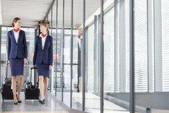 Tiếp viên hàng không tiết lộ thứ mang theo mỗi chuyến bay