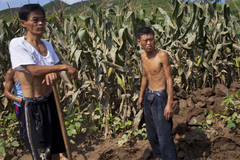 LHQ hé lộ sự thật 'giật mình' ở Triều Tiên