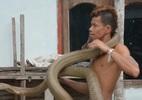 Khuất phục cặp rắn hổ mang chúa khổng lồ giữa phố