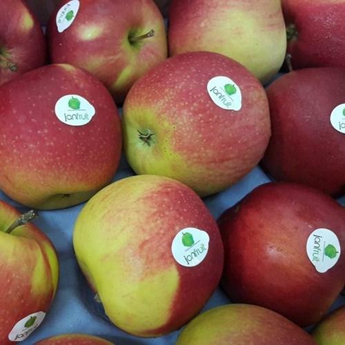 Cách phân biệt táo nhập khẩu và táo Trung Quốc 'đội lốt'