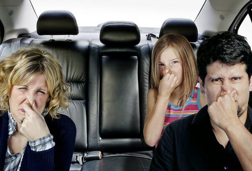 Cách khử mùi trên ô tô mới