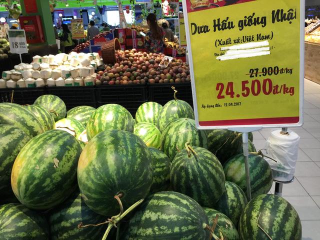 giải cứu dưa dấu, nông sản ế ẩm, được mùa mất giá, dưa hấu Nhật Bản, dưa hấu Quảng Ngãi, dưa hấu
