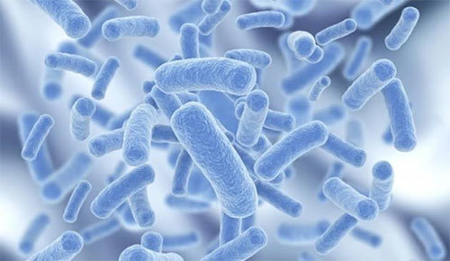 Dùng kháng sinh hợp lý cho người viêm đại tràng