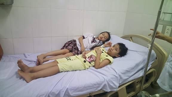 Ăn quả ngô đồng, 9 học sinh nhập viện cấp cứu