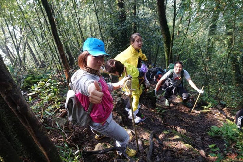 Dân văn phòng nô nức trekking Tam Đảo