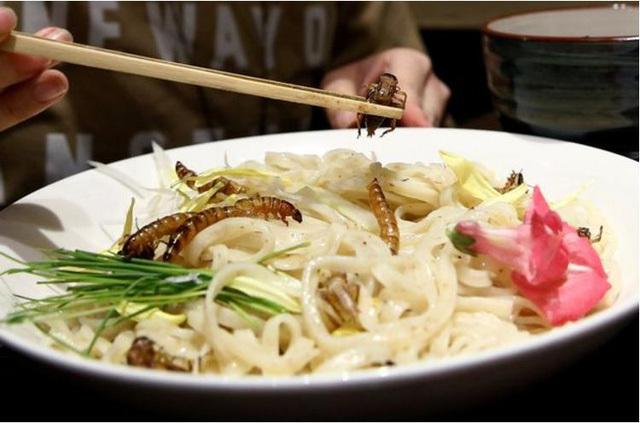 ẩm thực truyền thống, mỳ dế, mỳ trộn côn trùng, mỳ nhật