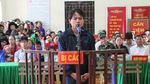 90 ngày tù cho kẻ cầm đầu phá rừng pơ mu ở Nghệ An