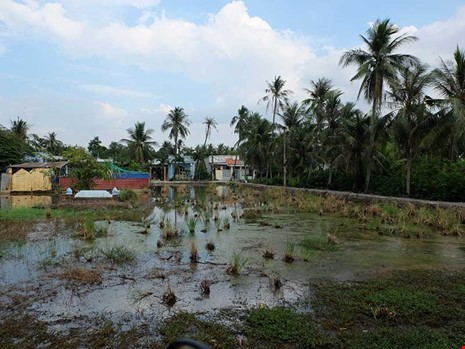 bất động sản, nhà đất, Sài Gòn, dự án treo, mua nhà, mua đất
