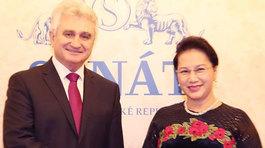 Chủ tịch Quốc hội hội đàm với Chủ tịch Thượng viện CH Czech