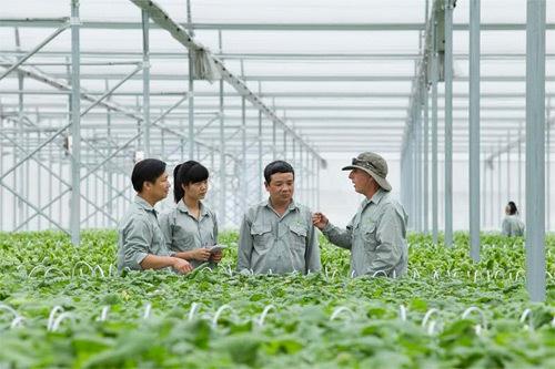 Học viện Nông nghiệp: 6 thập kỉ 'trồng người' cho nông nghiệp Việt