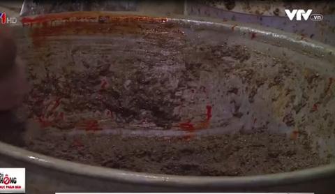 Chế biến cua xay: Dùng xẻng xúc cát, trộn cả hóa chất như trộn... vữa