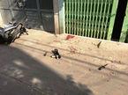 Bắt đối tượng nghi ngáo đá giết cụ bà trên đường đi chợ