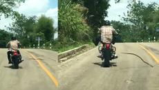 Rắn độc tung mình tấn công người đang đi xe máy
