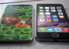 Tin xấu đầu tiên về iPhone 8