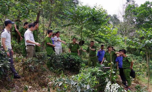 Hà Giang: Phát hiện xác phụ nữ bị trói vào gốc cây