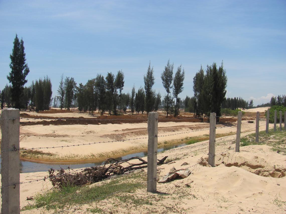 phá rừng, phá rừng phòng hộ, dự án du lịch, Phú Yên